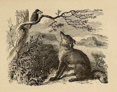 corbul si vulpea poveste audio pentru copiii fabule